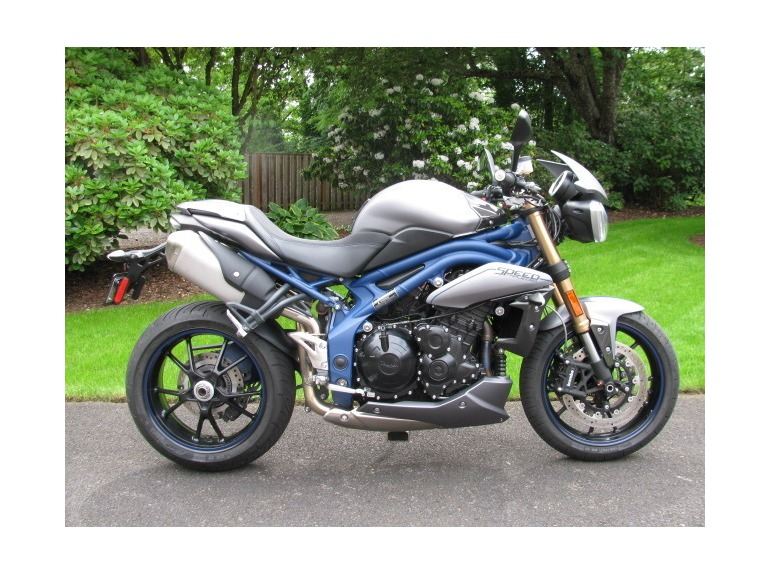 2013 Triumph Speed Triple SPECIAL EDITION