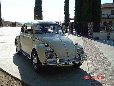 Volkswagen : Beetle - Classic sunroof 1964 vw sunroof bug