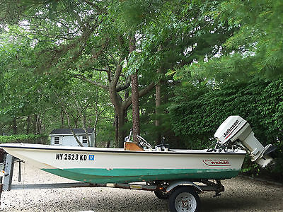 13 ft Boston Whaler with 40 Hp Johnson
