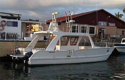 Beautiful 2014 38' Custom-Built Catamaran Dive/Fish/Recreation/Survey Boat