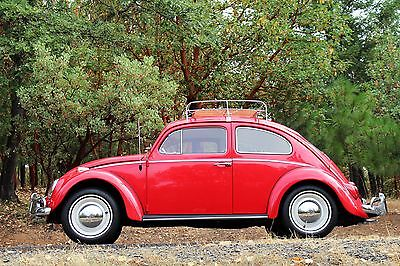 Volkswagen : Beetle - Classic Fully Restored Fully Restored1964 VW Bug All New Body-Off Restoration Just Finished Super Clean