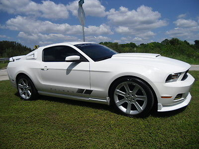 Ford : Mustang SuperCharged 2010 ford mustang saleen clone