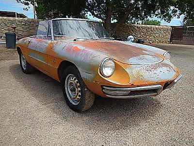 Alfa Romeo : Spider Duetto Roadster 1967 alfa romeo duetto spider roadster west texas project car barn find