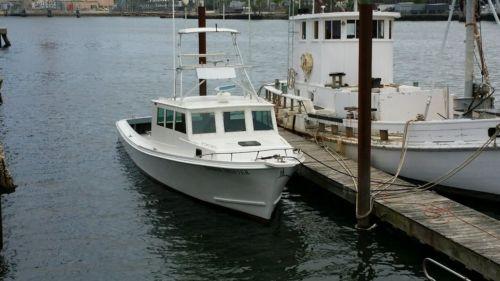 44ft. Chesapeake Deadrise Commercial Fishing/Chaorter Boat Fed. Documented