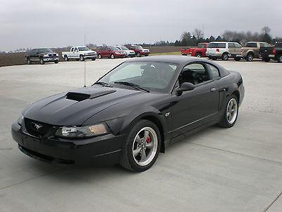 Ford : Mustang GT Bullitt Coupe 2-Door 2001 ford mustang bullitt