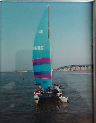 SAILBOAT HOBIE CAT 16 FOOT COMPLETE WITH TRAILER READY TO SAIL TODAY