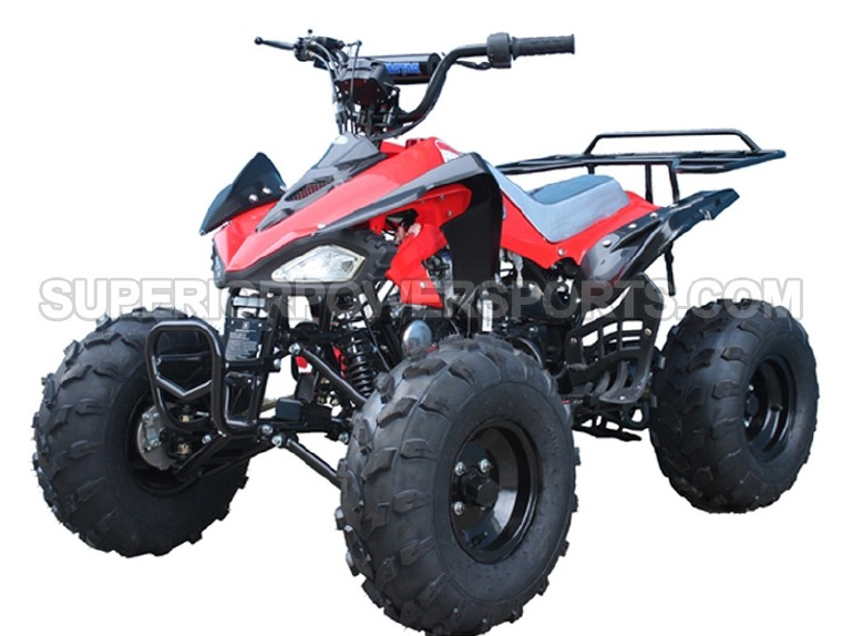 2016 Taotao 110cc ATV Type CHEETAH