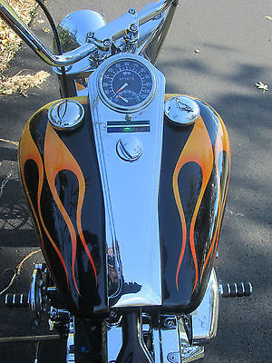 Custom Built Motorcycles : Chopper Custom Hardtail Chopper