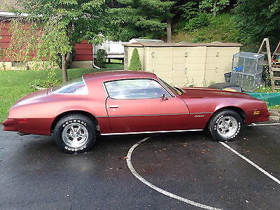Pontiac : Firebird 1977 Pontiac Firebird 1977 pontiac firebird