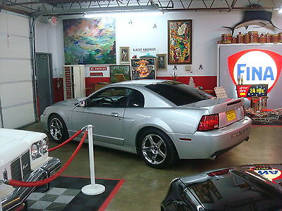 Ford : Mustang TERMINATOR COBRA TERMINATOR SVT 35,950 MILES 4.6 SUPER CHARGED #2376 OF 3768 PRODUCED