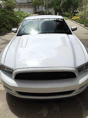 Ford : Mustang Saleen 2014 ford mustang saleen white label 63, 2