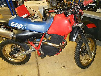 Stator /& Gasket for Honda XL600R XL-600R 1983 1984 1985 1986 1987