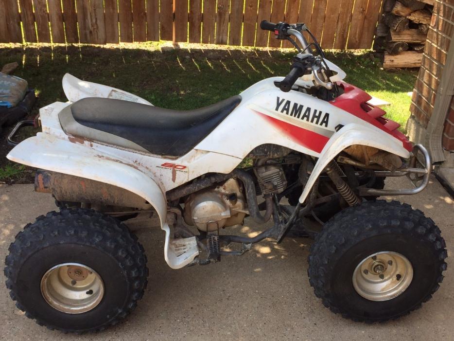 Yamaha Raptor R Battery Kids