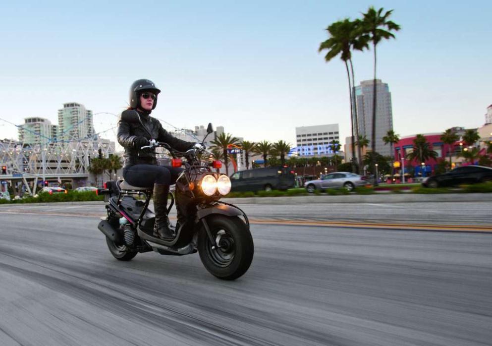 honda ruckus black motorcycles for sale. Black Bedroom Furniture Sets. Home Design Ideas