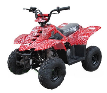 2014 Tao Tao 110cc Spider Four Stroke ATV Four Wheeler Kids ATV!