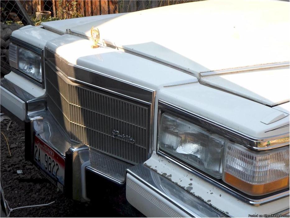Classy Limousine