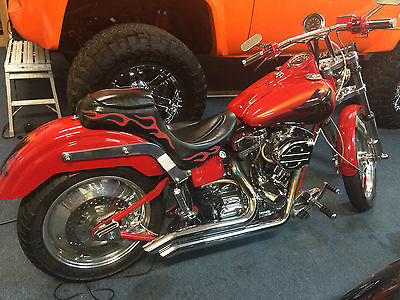 Harley-Davidson : Other harley type custom