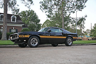 Shelby 1969 gt 500 shelby