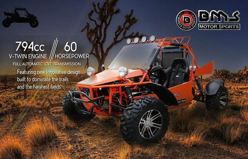 2015 BMS V-TWIN BUGGY 800 L4