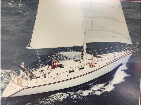 1984 Morgan Nelson/Marek 45