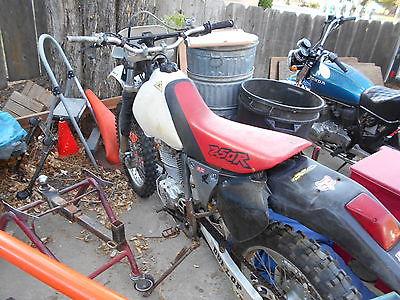 Honda : XR 1999 honda xr 250