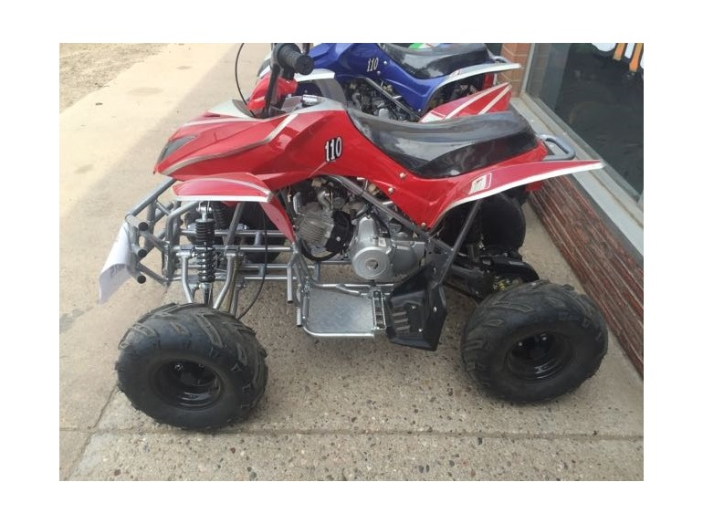 2015 Taotao ATA 110G ATV ATV
