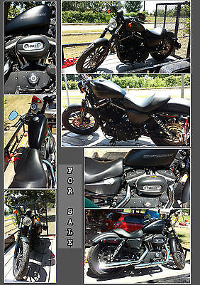 Harley-Davidson : Sportster 2009 harley davidson sportster iron 883 excellent condition only 711 miles