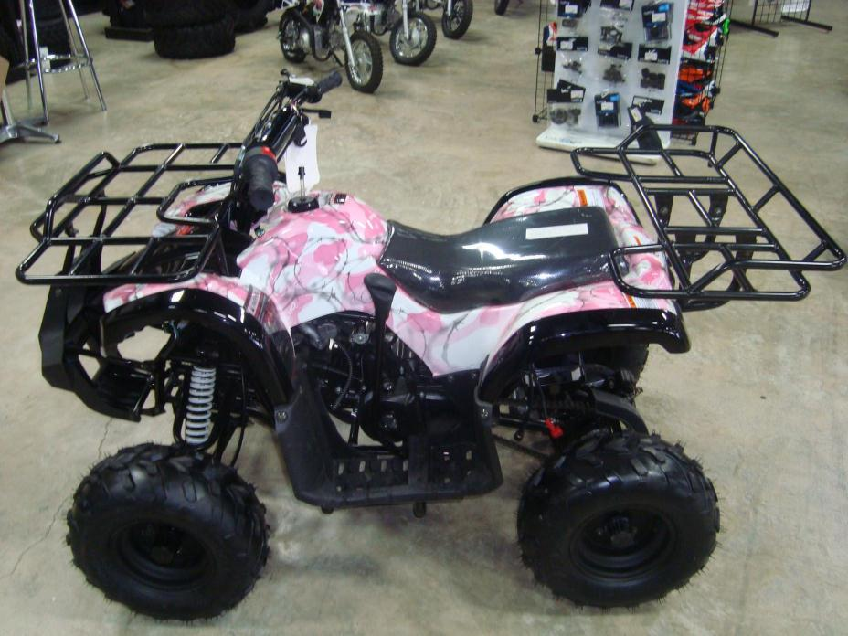 2015 Coolster 150cc