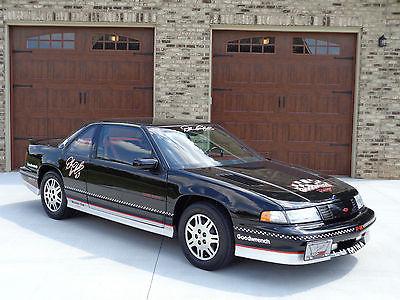 Chevrolet : Lumina DALE EARNHARDT EDITION Z34 1993 chevrolet lumina z 34 dale earnhardt limited edition 1 of only 19 built