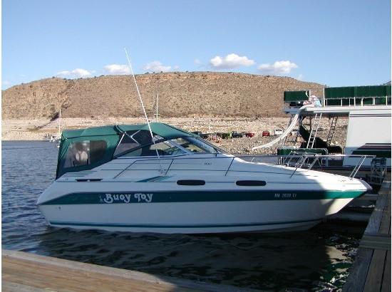 1994 Sea Ray Sundancer 230