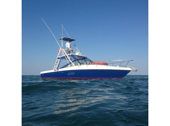 Blackfin Combi Boats For Sale