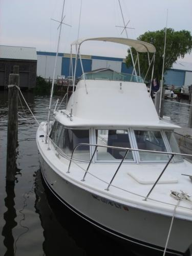 1979 Bertram 31 Flybridge Cruiser