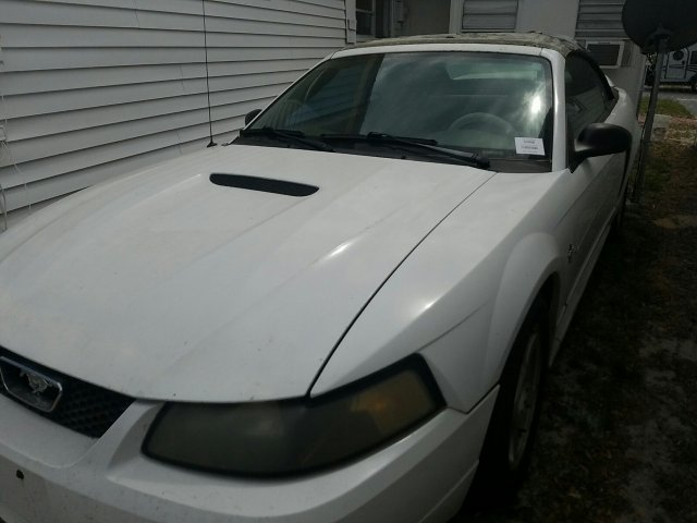 2001 FORD FORD MUSTANG
