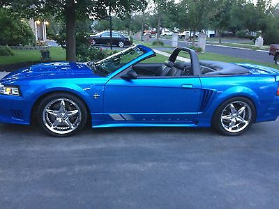 Ford : Mustang SALEEN 1999 saleen mustang convertible