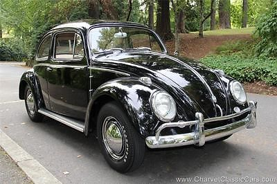 Volkswagen : Beetle - Classic LOW-MILEAGE ORIGINAL! See VIDEO. 1959 vw beetle wonderful low mile original see video