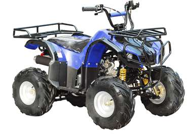 2015 Taotao 125 Automatic Kids quad