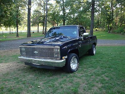 1983 chevy pickup cars for sale. Black Bedroom Furniture Sets. Home Design Ideas