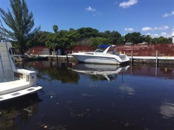 1991 Sea Ray Sundancer 350 Express Cruiser