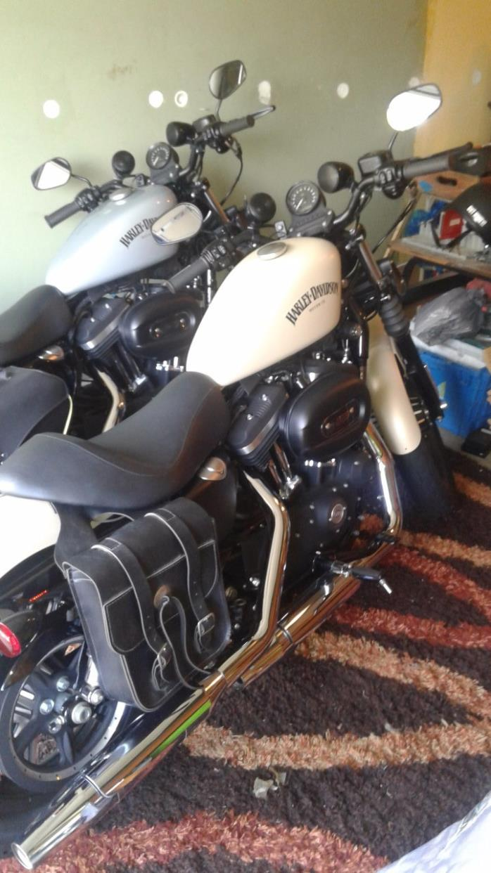 harley davidson sportster 883 iron motorcycles for sale in dayton, ohio