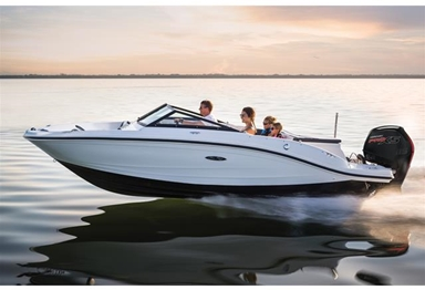 2017 Sea Ray 19 SPX Outboard